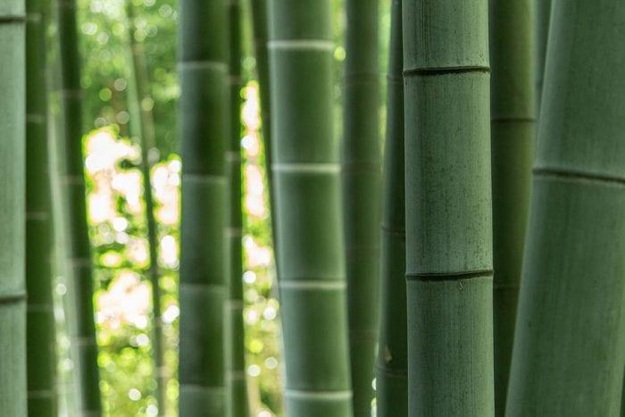 Kelebihan Kain Bahan Cotton Bamboo